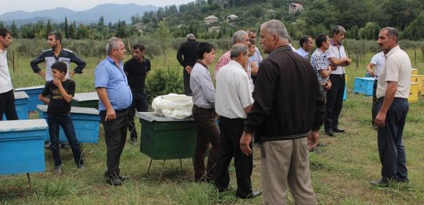 Azerbaycan'da Arıcılık Projeleri Devam Ediyor - 3