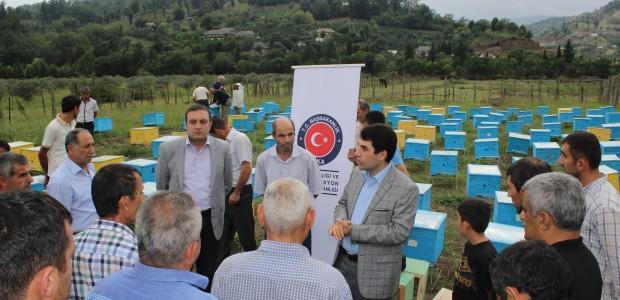 Azerbaycan'da Arıcılık Projeleri Devam Ediyor - 4