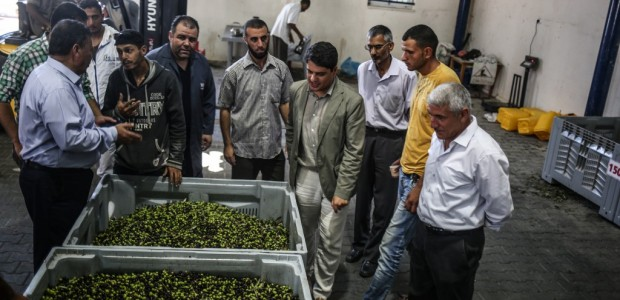 An Olive Oil Plant Built by TİKA Has Opened in the Gaza Strip - 5
