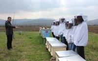 تيكا تواصل دعمها في مجال تربية النحل في البوسنة والهرسك
