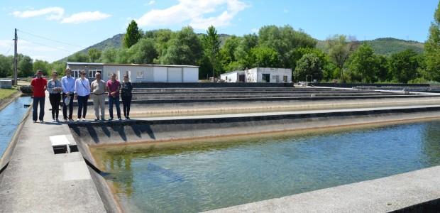 مشروع تطوير الثروة السمكية والموارد المائية في الجبل الاسود - 1