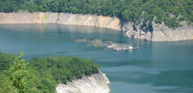 مشروع تطوير الثروة السمكية والموارد المائية في الجبل الاسود - 3