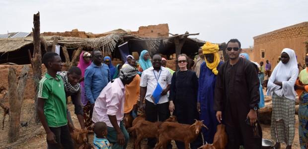 """دعم وتطوير قطاع الثروة الحيوانية في النيجر من قبل """"تيكا"""" التركية - 2"""