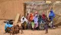 """دعم وتطوير قطاع الثروة الحيوانية في النيجر من قبل """"تيكا"""" التركية - 3"""