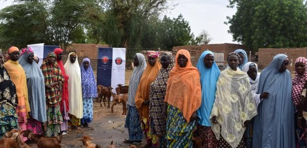 """دعم وتطوير قطاع الثروة الحيوانية في النيجر من قبل """"تيكا"""" التركية - 4"""
