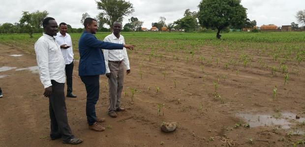 Sudan'da Tohum Projesi Tamamlandı - 5