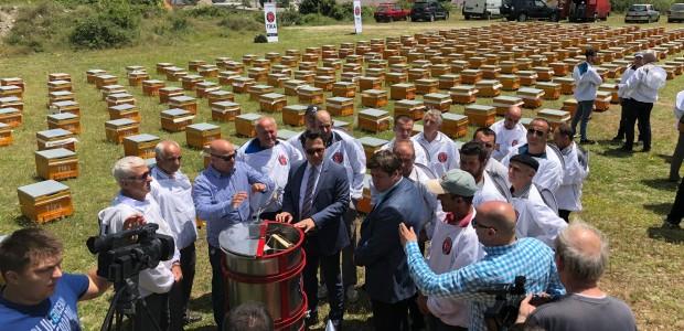 TİKA Develops Beekeeping in Macedonia  - 3
