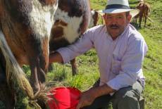 TİKA Offers Bulk Tank Support to Colombian Farmers