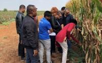 TİKA'dan Madagaskarlı Ziraat Mühendislerine Eğitim Desteği