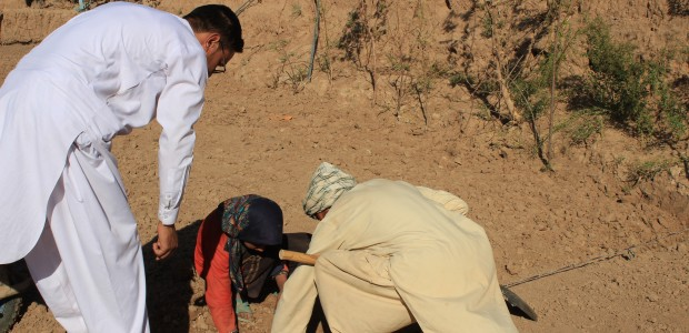 TİKA Supports Farmers in Afghanistan  - 3