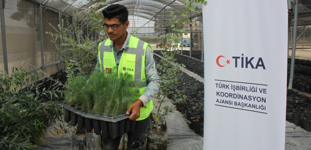 TİKA Opens Sapling Production Facility in Palestine - 1