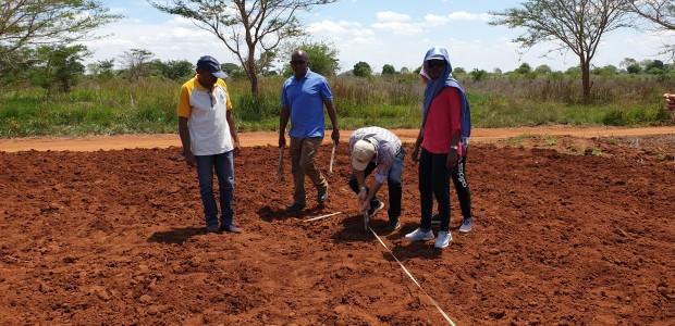 TİKA'dan Mozambik Tarımına Destek  - 2