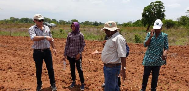 TİKA'dan Mozambik Tarımına Destek  - 4