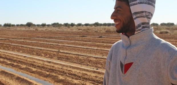 تيكا التركية تدعم زراعة ستيفيا (نبتة السكر) في سيدي بوزيد التونسية - 2