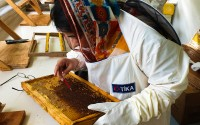 Pakistani Beekeepers Were Trained in Ordu