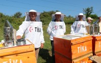 TİKA Provides Beekeeping Support to Albania
