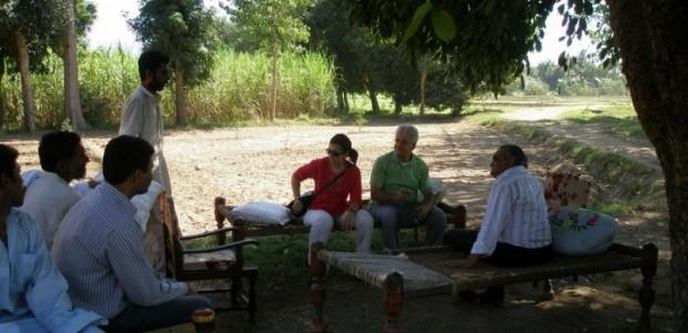 TİKA Tarımsal Kalkınma İçin Pakistan'da  - 3