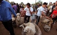 Libya'da Bayram