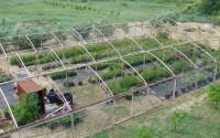 Karadağ'da Zeytin Üreticilerine Eğitim