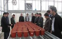 TİKA'nın Afganistan'daki Eğitim Projeleri Devam Ediyor