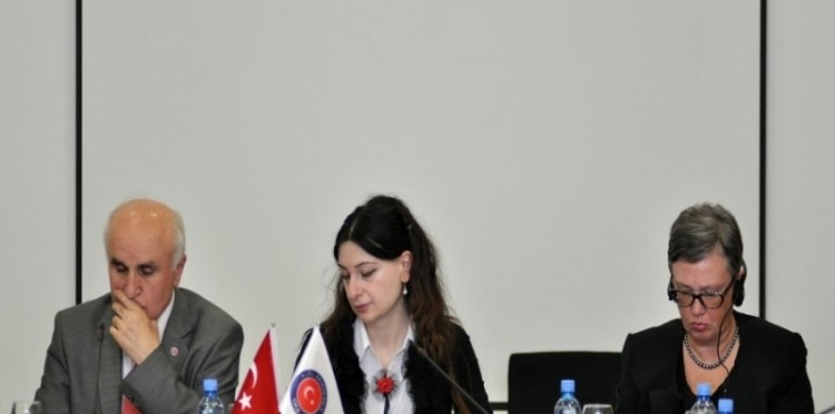 "TİKA Gave Support To Public Lecture: ""Democratic Political Culture"" In Georgia"