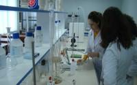 TİKA, Sektörel Çeşitlilikte Arnavutluk'ta İlk Sırada