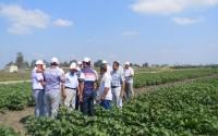 Kazakistanlı Tarım Heyetinin İnceleme Gezilerine Destek