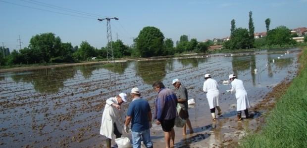 TİKA Projesi Makedonya'da Türkiye'nin Gururu Oldu  - 1