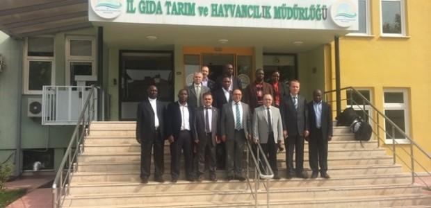 Uganda ile Tarım ve Hayvancılık Alanında İşbirliği  - 3