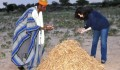 Burkina Faso'da 100 Bin Moringa Oleifera Ağacı Yetiştirilmesi Projesi'nin Üçüncü Aşamasına Geçildi  - 1