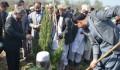 تيكا تساهم في غرس 9 آلاف شتلة في حديقة الصداقة التركية الأفغانية - 1